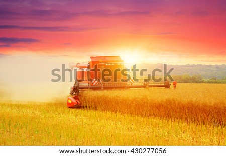 Combine working in field. Harvester harvests - stock photo