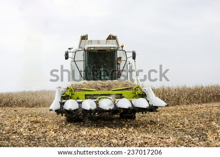 Combiner in the corn field ready for harvest - stock photo