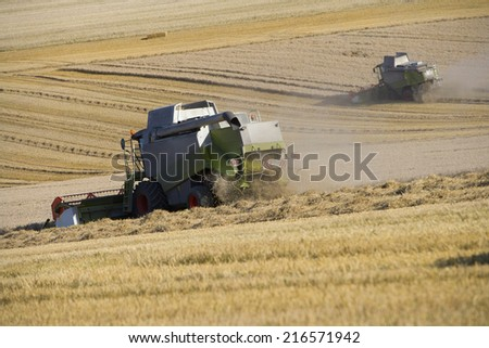 Combines harvesting wheat in sunny, rural field