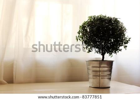 comfortable home interior - stock photo