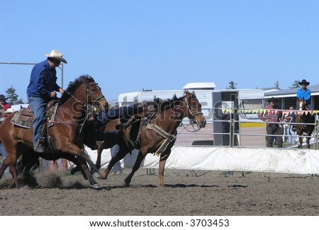 Coming off the Horse - stock photo