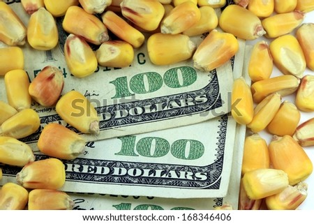 Commodity Market - Futures and Options Trading Concept - stock photo