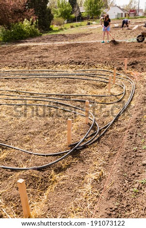 Community garden prepared for planting in early Spring in urban area. - stock photo
