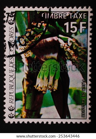 Comoros-circa 1977: Postage stamp printed in the Comoros shows an image of exotic flowers banana plant - stock photo