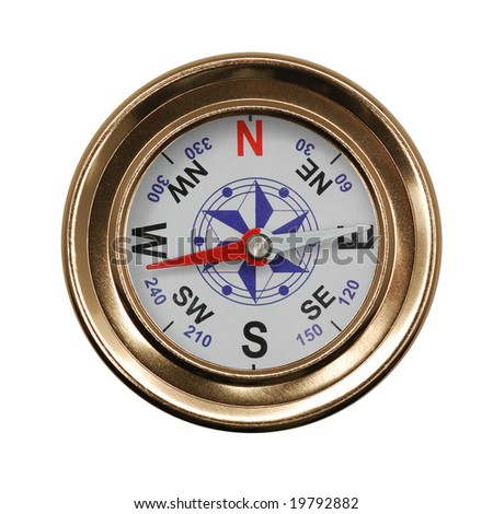 the magnetic compass research paper Magnetic compass orientation in night-migratory songbirds is embedded in the  visual system and seems to be based on a  original research article front.