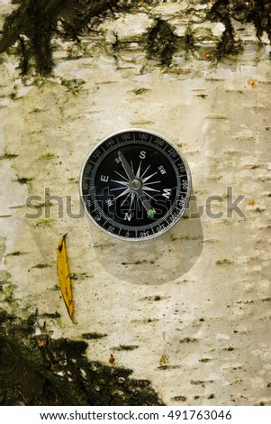 Compass for travel and hiking on tree outdoor