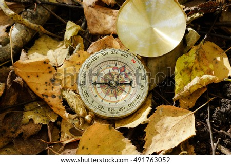 Compass on autumn foliage and moss ground