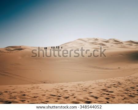 Competitors in the Marathon des Sables traverse a sahara desert dune - stock photo