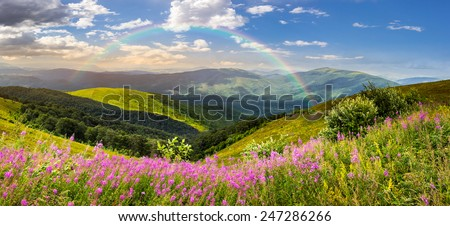 composite landscape with high wild grass and purple flowers on the top of high mountain in morning light with rainbow - stock photo