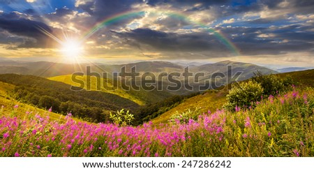 composite landscape with high wild grass and purple flowers on the top of high mountain in sunset light with rainbow - stock photo