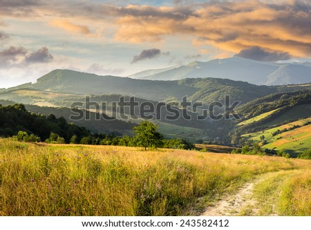 composite rural landscape. meadow path  on hillside with trees near the forest in high mountains in morning light - stock photo