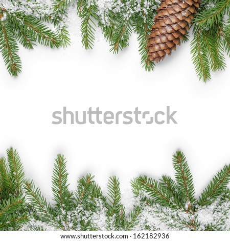 composition from fir twigs with fake snow, on white background - stock photo