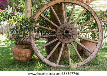 composition of a wheel cart besides a tree