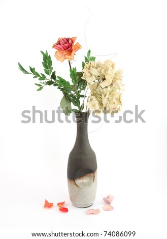 Composition of dry flowers in vase - stock photo