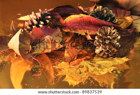 composition of leaves in autumn colors and pine cones  on gold paper and glitter