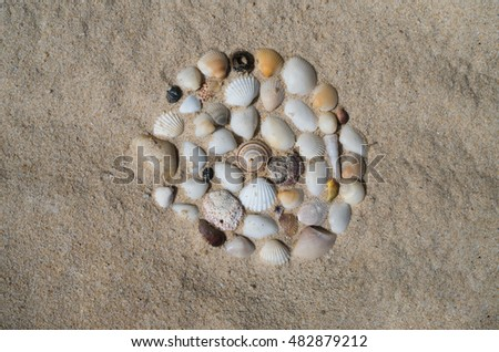 Composition of sea shells on sandy beach. Summer background