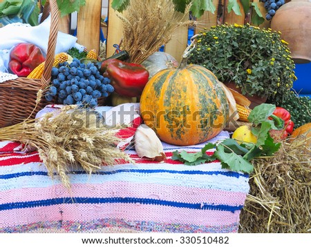 composition with a variety of organic vegetables and fruits over carpet. - stock photo