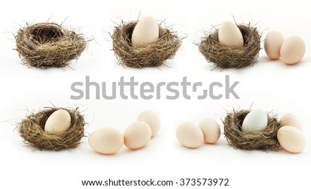 Composition with empty nest and big eggs inside and outside of the small nests, isolated on white - stock photo