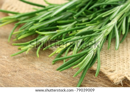 Composition with fresh rosemary - stock photo