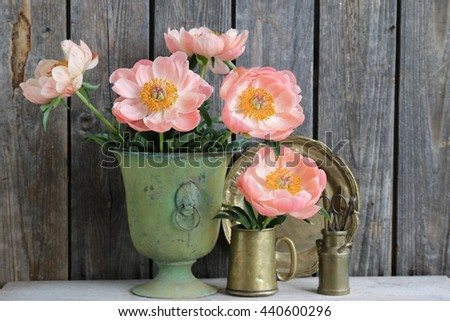 Composition with lovely bouquet of salmon peonies in vintage, antique very old green vase, brass mug, brass plate,gardening holder with tools. Floral scene, dark wooden background