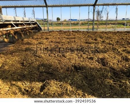 Compost - stock photo