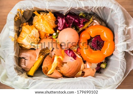 Compost in a kitchen compost bin - stock photo