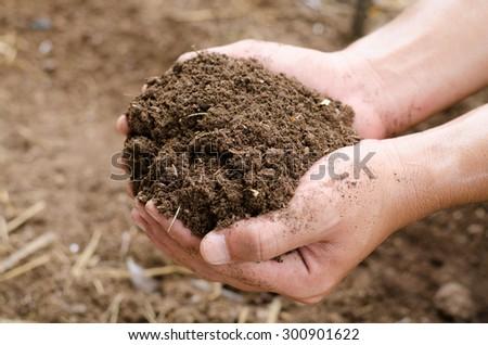 Compost soil, Organic plant fertilizer on farmer hand for plantation - stock photo