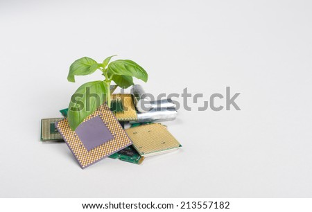 Computer/electronic recycling concept Detailed shot with focus on plant  - stock photo