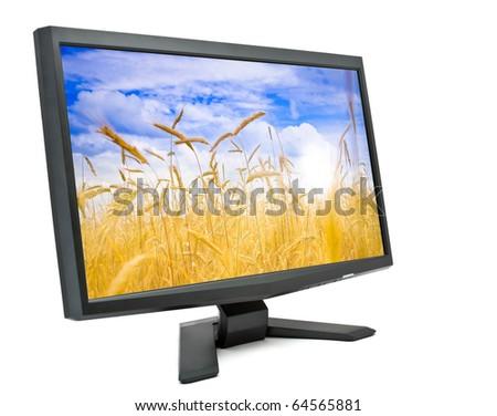 Computer monitor isolated on white background with field of rye on screen (my photo). - stock photo