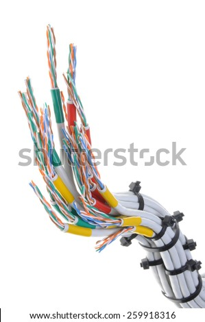 Computer network cables isolated on white background