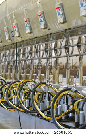 Computerized commercial milking machines on large dairy farm. - stock photo