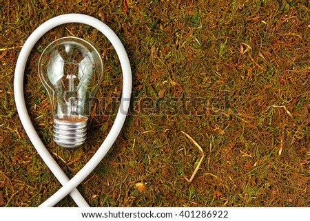 Concept ecology. Light bulb on orange natural moss with copy space - stock photo