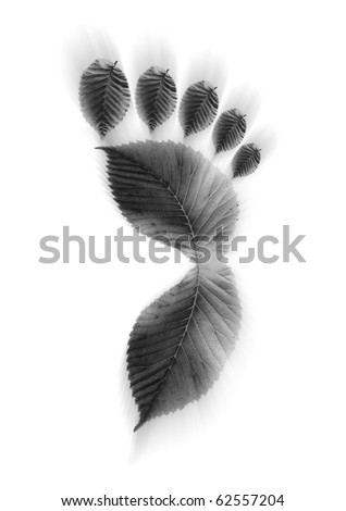 Concept for carbon footprint. - stock photo