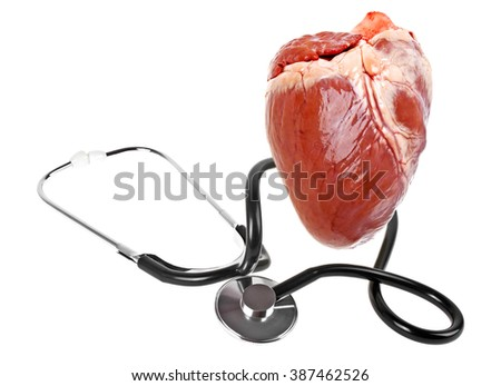 Concept for healthcare - heart and stethoscope on a white background - stock photo