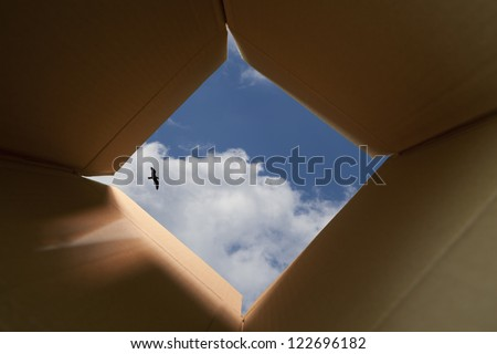 Concept image about freedom of mind and unconventional thinking outside the box. - stock photo