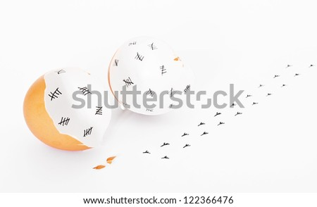 Concept of an escaped young chicken after counting days within the egg shell. - stock photo