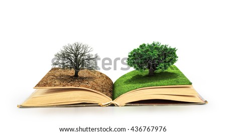 Concept of changes. Open book. One side full of grass with a life tree, different side is desert with a dead tree. Concept of doubleness. Isolated on white background. - stock photo