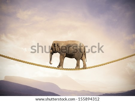 Concept of difficulty in business with elephant on a rope