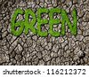 concept of environment : green grass text on drought - stock photo
