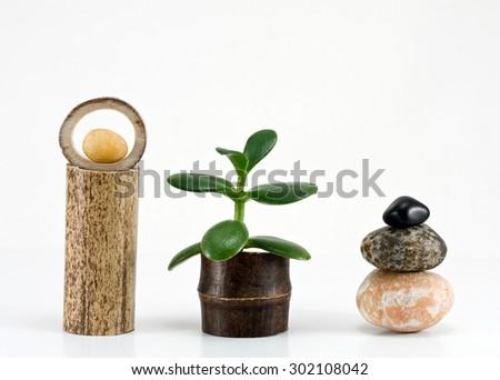 concept of harmony - stock photo