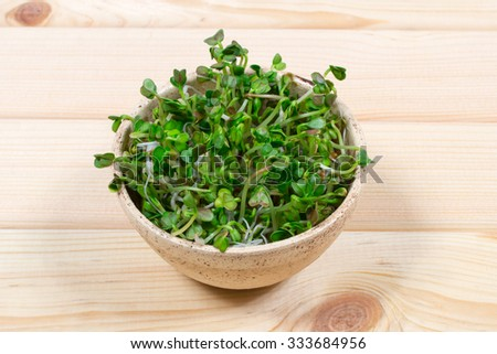 Concept of healthy diet. Closeup - radish sprouts on a wooden background.