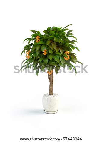 Concept of tree with money fruit on it - stock photo