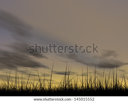 Concept or conceptual black grass or plant field or meadow silhouette in summer or spring evening over a sky at sunset with clouds background,metaphor to nature,landscape,rural,environment or freedom