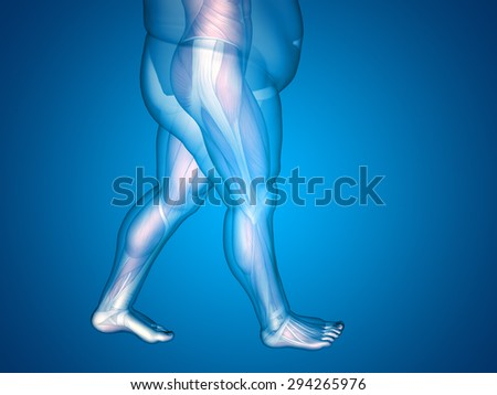 Concept or conceptual 3D fat overweight vs slim fit diet with muscles young man blue gradient background metaphor weight loss, body, fitness, fatness, obesity, health, healthy, male, dieting, shape - stock photo
