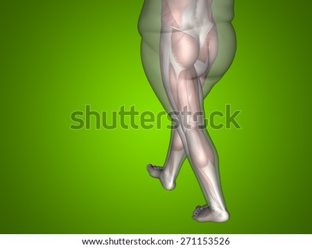 Concept or conceptual 3D fat overweight vs slim fit diet with muscles young man, green gradient background, metaphor weight loss, body, fitness, fatness, obesity, health, healthy, male, dieting, shape - stock photo