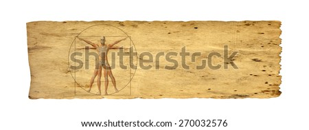 Concept or conceptual vitruvian human body drawing on old paper background as metaphor to anatomy, biology, Leonardo, classic, anatomical, circle, symbol, revival, proportion, skeleton or manuscript - stock photo