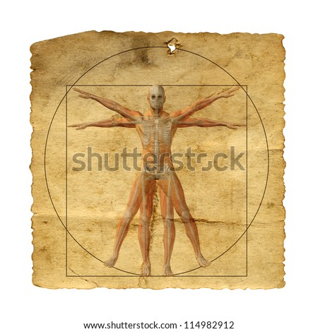 Concept or conceptual vitruvian human body drawing on old paper or book background as metaphor to anatomy,biology,Leonardo,classic,anatomical,circle,symbol, revival,proportion,skeleton or manuscript - stock photo