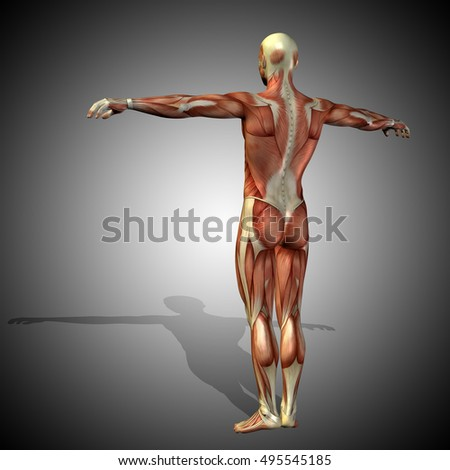 Concept Strong Human Man 3 D Illustration Stock Illustration ...