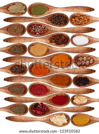 Concept with spices on wooden spoons, isolated on white background