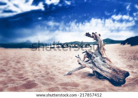 concept wood horse - stock photo